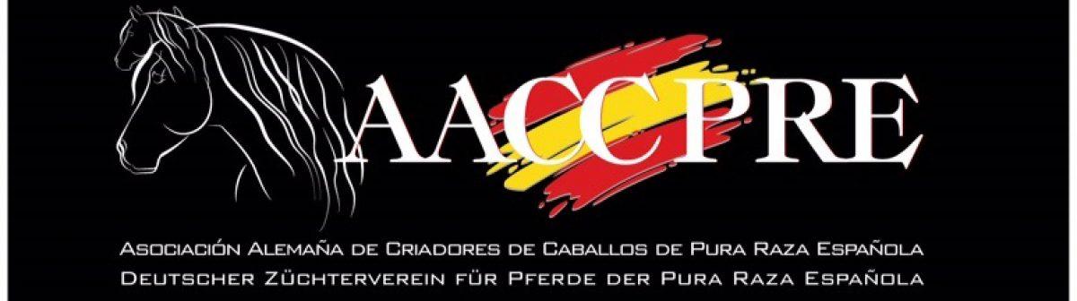 AACCPRE.COM